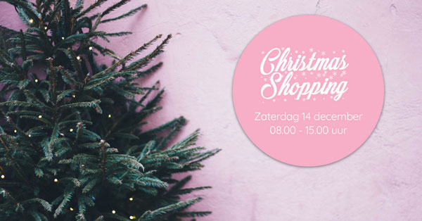 christmas shopping - SQIN in Elst